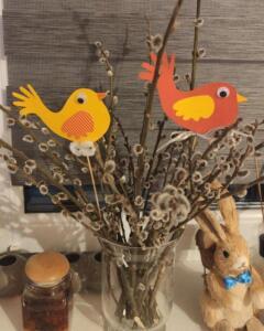 Ptacci Marek