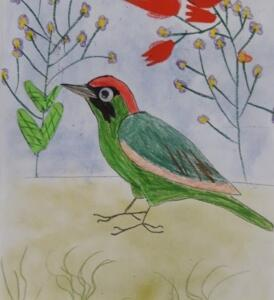 Ptacek 2