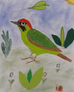 Ptacek 3 (1)